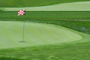 Golf Purists Like Me..UPSET!